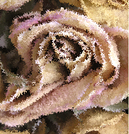 Spattered edges stylize this photo of a peach colored rose.