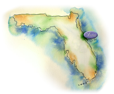 Map of Florida showing New Smyrna Beach