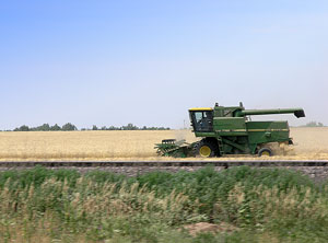 Combine cutting wheat in Kansas